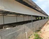 牛場保暖捲簾布養殖場專用捲簾布