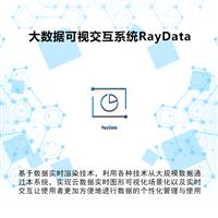 大数据可视交互系统RayData