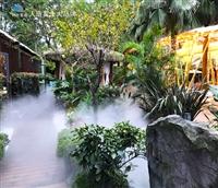 泸州市野生造雾厂家