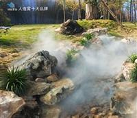 广元市周期野生造雾供给