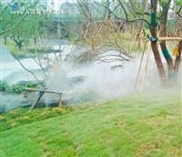 泸州市野生造雾定制