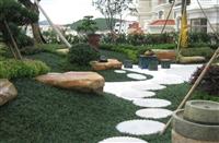 宁波草坪设计施工