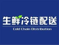 岳阳到渭南冷藏物流公司一站式服务