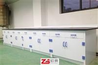 PP实验台实验桌实验台昭赛ZHAOSAI