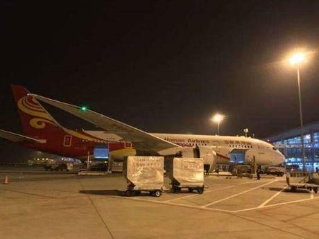 宁波机场空运公司 点击这里了解详情