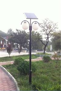 四川太阳能路灯厂家有哪些 5米20W海螺臂灯杆