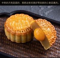云南普洱市華美月餅特價促銷