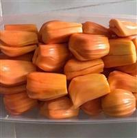 泰国红肉菠萝蜜苗 泰国红心菠萝蜜苗 红肉菠萝蜜苗批发