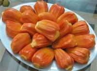 越南红肉菠萝蜜苗 越南红心菠萝蜜苗 红肉菠萝蜜苗批发