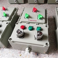 BXX52防爆電源動力檢修箱 防爆檢修箱