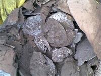苏州废锡回收价格 锡灰多少钱每公斤