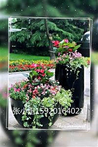 欧式仿古玻璃钢花盆 仿石材花盆 玻璃钢组合圆形花盆 肇庆广东