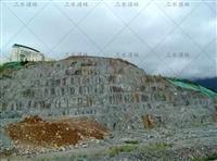 咸宁地区矿山复垦专用绿化草籽售卖
