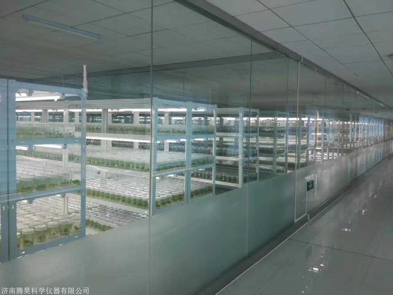 植物组培架,植物组织培养架,光照培养架
