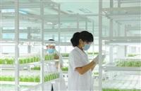 北京组培设备,上海组培室仪器设备,上海植物组培设备,组培