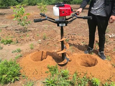 小型挖坑机价格与图片
