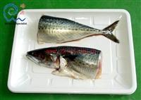 峰源知名品牌海鲜食品真空塑封机 冷鲜肉牛排真空塑型机品质可靠