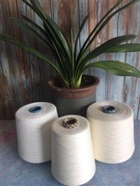 廣東40支絲光棉紗線價格