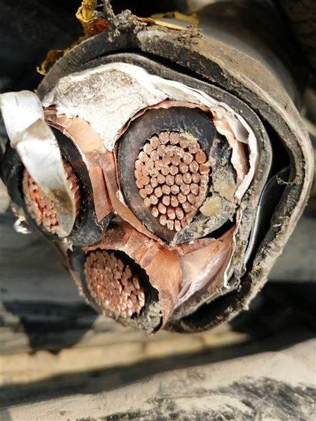花都区废电缆回收公司价格