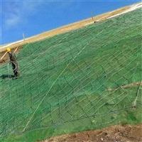 怀化喷播防护植草绿化喷播机厂家