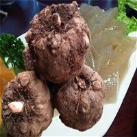 盘龙魔芋种子  珠芽魔芋种子销售  恩施魔芋种植基地