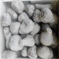 寻甸魔芋种子  珠芽魔芋图片  魔芋种植基地简介