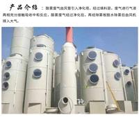 涂装车间废气处理喷淋塔净化设备