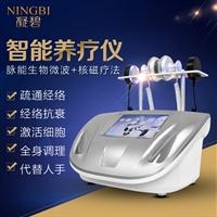 智能科技養生儀器,廣州養生儀器公司,養生理療儀器定制加工