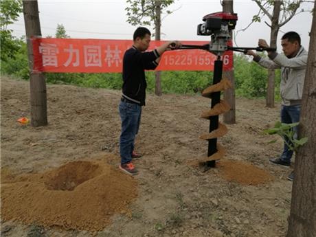 种树钻坑机挖树窝专用