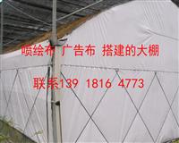 二手地毯 防雨布 广告布 搭棚材料  种植养殖保温地毯