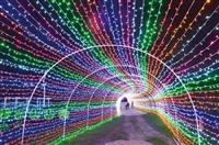 梦幻灯光节出售、春节景区大型灯光节策划出售