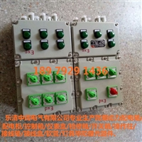 防爆配电箱厂家供应加散热片防爆变频器动力配电箱BXD51