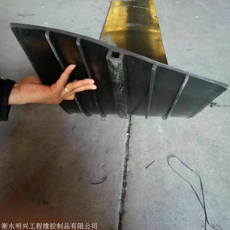 顶板伸缩缝外贴式橡胶止水带