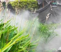 景观人工造雾气喷雾造景