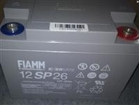非凡蓄電池,12SP65,國內外知名品牌,價格實惠,現貨供應