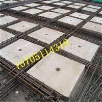 浙江寧波市生產、按裝雙向密肋樓板XDJC裝配式預制構件
