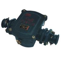 山東澤榮BHD2-100/2T礦用隔爆型低壓電纜接線盒