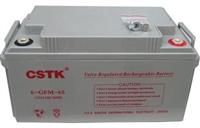 山特蓄電池正品現貨足容量C12-100