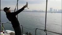青島出海釣魚租游艇價格一覽表