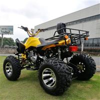 广西沙滩车5系列广西江氏沙滩车 125-CC越野摩托车