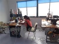 赛典专业 医用袋导管热合机,pvc高频热合机 线束管热合机