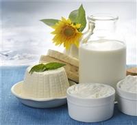 乳酸菌乳制品沙门氏菌检测  能量测试