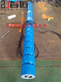 甘肃QJ井用电泵型号