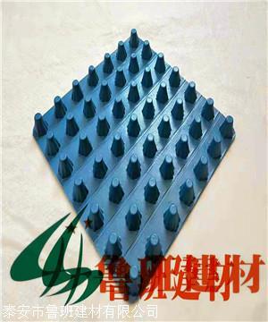 厂家直销塑料凹凸型储排水板2.0cm