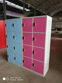 重庆学生储物柜 钢制储物柜 铁皮储物柜 收纳柜 厂家直销