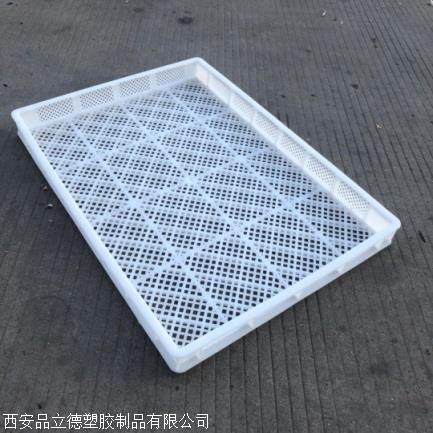 乌鲁木齐塑料烘干盘吸塑托盘现货直发