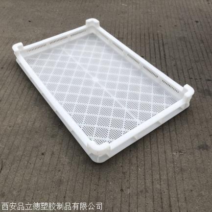 乌鲁木齐塑料烘干盘吸塑托盘供应