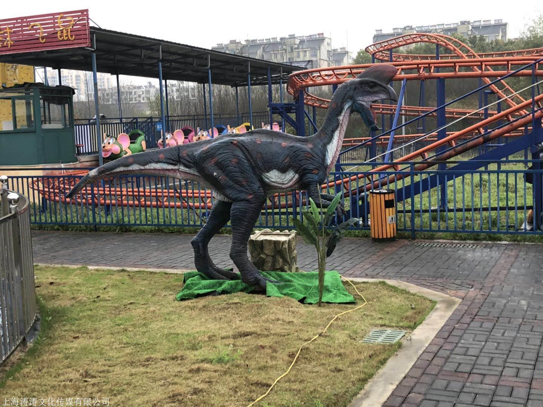 贵阳小河恐龙展地产景区合作