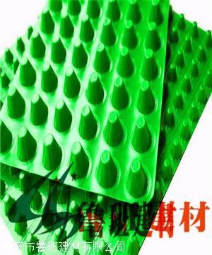 绿化塑料阻根板 防排水板滤水板