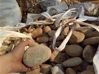峰景园林直销四川鹅卵石产地 四川鹅卵石造景 四川鹅卵石案例